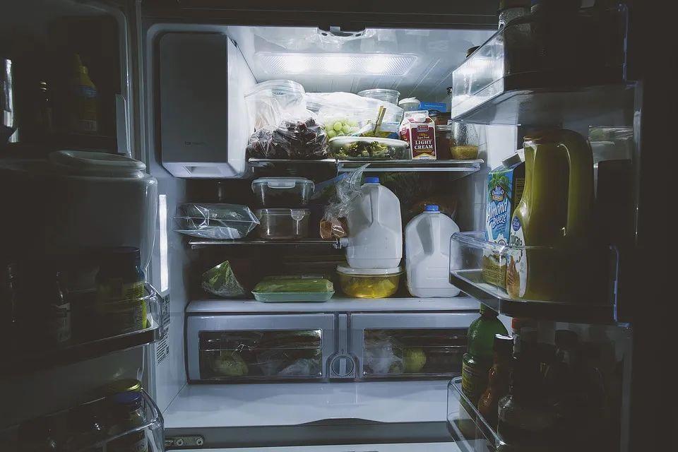 冰箱里放上这个黑科技小钢炮,除味还抑菌
